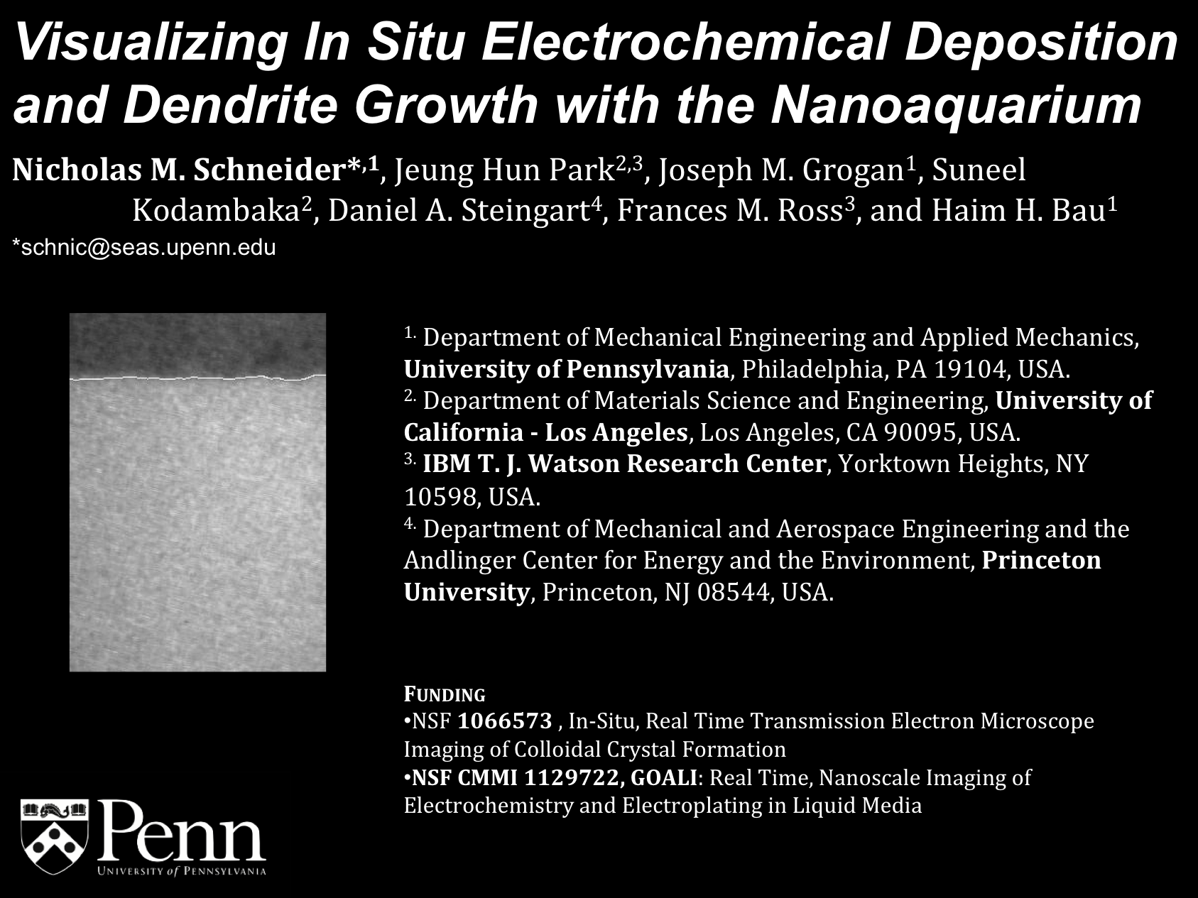 MRS Fall 2013 - Visualizing In Situ Electrochemical Deposition and Dendrite Growth with the Nanoaquarium